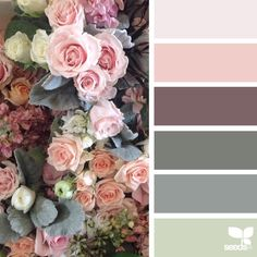 today's inspiration image for { flora hues } is by @huckleberrykaren ... thank you, Karen, for your inspiring #SeedsColor image share!
