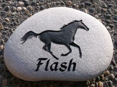 Flash, The thoroughbred