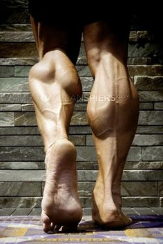 everyone should be lucky enough to have calfs like this.  My favorite
