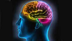 hypersensibilité et surefficience mentale (comment vivre en étant hypersensible, extrait)