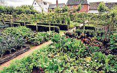 Veggie Garden! Only I'd need one a littttttle smaller
