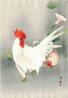 Rooster and Hen with Morning Glories by Kako Tsuji (published by Daikokuya)