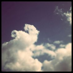 the elephant Elephant, Clouds, Outdoor, Outdoors, Elephants, Outdoor Games, The Great Outdoors, Cloud