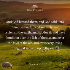 """God blessed them and said to them, """"Be fruitful and increase in number; fill the earth and subdue it. Rule over the fish of the sea and the birds of the air and over every living creature that moves on the ground."""""""