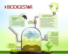 Una infografía con un detalle de los principales componentes de un biodigestor casero, incluyendo insumos, proceso, extracción y uso del biogas.
