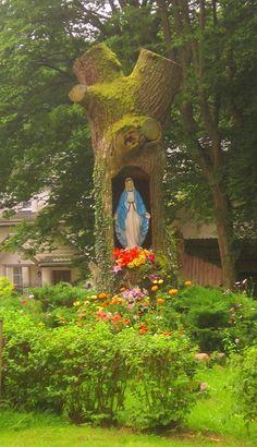 Kapliczka W Pniu Drzewa Blessed Mother Mary, Blessed Virgin Mary, Religious Icons, Religious Art, Grotto Design, Marian Garden, Sacred Garden, Virgin Mary Statue, Prayer Garden
