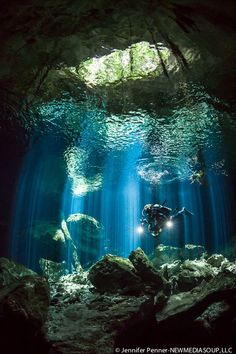 Scuba diving and underwater photography go hand-in-hand in the cenotes of the Yucatan Peninsula of Mexico. By Jennifer Penner on 500px