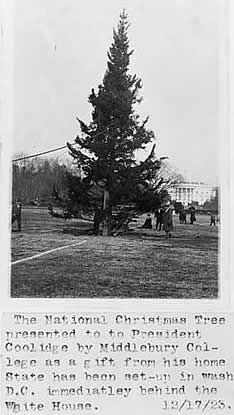 christmas at the whitehouse 1900 | ... tree being erected on a lawn, with the White House in the background