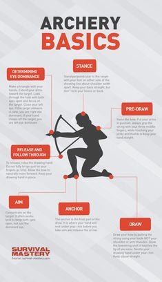 Basic facts about archery infographic. For all your archery supplies needs, visit Gable Sporting Goods online or in-store in Douglasville, GA! Archery Hunting Bowhunting, Archery Tips, Crossbow Hunting, Archery Targets, Crossbow Arrows, Archery Quotes, Archery Sport, Archery Training, Archery Lessons
