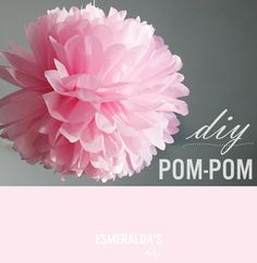 DIY Pom-Pom