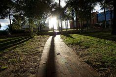 Curtin University. Perth, Western Australia.