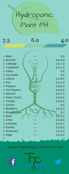 Specific plant PH infographic #hydroponicsinfographic