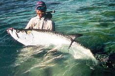 Land a BIG tarpon on the fly