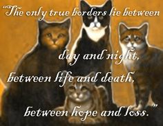 Warriors: Omen of the Stars - The Last Hope. Quote said by Brambleberry, the RiverClan medicine cat!<3!