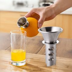 Stainless Steel Juicer - Juice From the Fruit – Go Go Kitchen Gadget