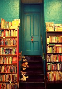 enticing colors and shelves of books