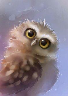 Beautiful Owl ~