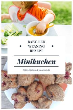 Minikuchen ohne Zucker   Babyled Weaning
