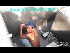 Proses aquarium bawah tanah - YouTube
