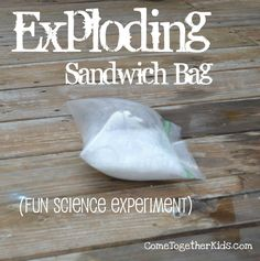 Here's what you need:    sandwich-sized ziploc bag (I used a generic brand and it worked fine!)  1/4 cup warm water  1/2 cup vinegar  1 tbsp. baking soda  toilet paper    Put baking soda in toilet paper to make a packet.  Put water and vinegar in sandwich bag.  Hold packet of soda toward top while you seal the bag.  Shake bag to mix and set down quickly either outside or in sink.