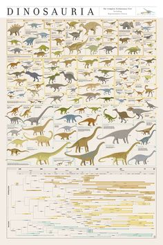 """DINOSAURIA  $37  24"""" x 36""""    Presenting a groundbreaking new take on the classification and evolution of dinosaurs! Born from over 500 hours of research and illustration, this plotting of prehistoric fauna assembles over 700 genera into a first-of-its-kind taxonomy synthesized from existing classification systems."""