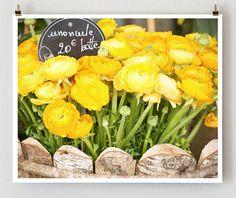 Yellow Ranunculus Paris  French Fine Art by TheParisPrintShop, $28.00