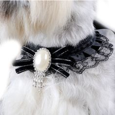 Além Da Tendência Da Moda de Luxo Renda Preta Pérola Pet Colar Acessórios Colar Do Gato Coleira de Cachorro Chihuahua de Pelúcia(China (Mainland))