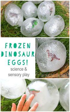 Wonderfully fun DIY frozen dinosaur eggs for sensory and imaginative play for kids!