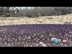 Mysterious Purple Spheres Found in the AZ Desert