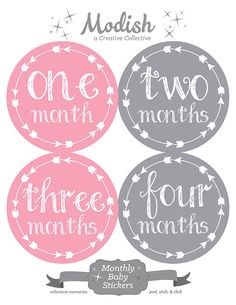 FREE GIFT, Monthly Onesie Stickers, Monthly Baby Stickers, Baby Belly Stickers, Baby Milestone Stickers, Arrows, Tribal, Girl by ModishCC on Etsy https://www.etsy.com/listing/217122690/free-gift-monthly-onesie-stickers