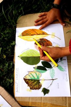 Leaf Projects, Summer Art Projects, Autumn Activities, Art Activities, Art Drawings For Kids, Art For Kids, Fall Crafts For Toddlers, Art And Craft Videos, Jr Art