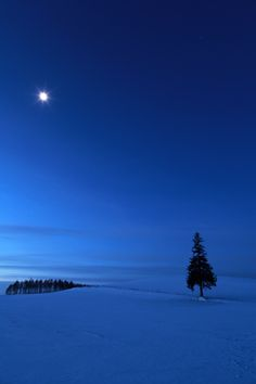 12月8日に生まれての画像(写真) Winter in Biei, Hokkaido, Japan