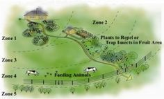 Permaculture - What is it and Why is it Important - Zones