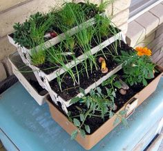 Fishing Tackle Box Upcycled Into Original Planter - #Flowers,PlantsPlanters #Planter, #Upcycled (source: 1001gardens.org)