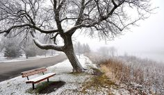 Resolution: size: 3092 kB - benches on winter road ultra hd wallpaper Winter Road, Winter Time, Winter Snow, Winter Landscape, Landscape Photos, Hd Wallpapers Iphone6, Free Winter Wallpaper, The Enchantments, Seasons Of The Year