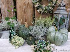 Kürbisdeko in gedecktem Grau und Grün