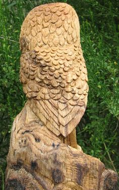 Saw Whet Owl Chainsaw Sculpture