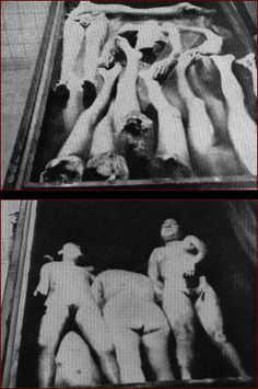 Nazis at Ravensbruck concentration camp amputated limbs from prisoners in useless attempts to transplant them onto other inmates. Many of the victims perished as a result.: