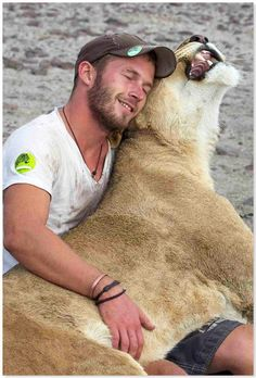 A wonderful video of German conservationist Valentin Gruener greeting Sirga the lioness, who he raised from birth.