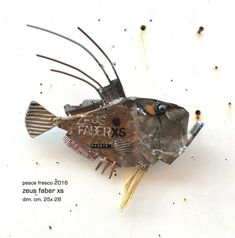 Sculpture Art, Sculptures, Assemblages, Fish Design, Fish Art, Insects, Projects To Try, Decor, Embellishments