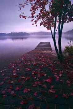 purple lake in autumn