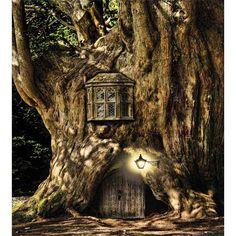 Fantasie-Märchen-Minihaus im Baum . Fantasy Fairytale Miniature House in the tree Fantasy House, Fantasy World, Fantasy Places, Fantasy Kunst, Fantasy Art, Dream Fantasy, Dark Fantasy, Elfen Fantasy, Fairy Tree