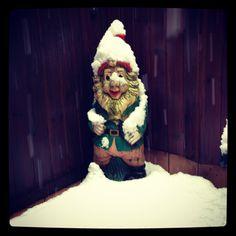 Christmas gnome #christmas #snow #kikoxmas #kikochristmas