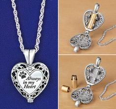 """Pet Ashes Memorial Locket another pinner said,""""REALLY morbid."""" but they must not be as pet lover. I would love to have this"""