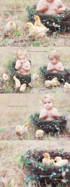 Easter chickens photo shoot. ♡ Photo Session Ideas   Props   Prop   Child Photography  Pose Idea   Poses   Family   Farm   Spring Mini Session   Animals   Pet   Baby