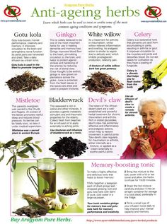 Anti-Ageing Herbs   http://www.ayurvedahimachal.com/pure-herbal-products/index.php?route=product/category&path=60#sthash.zXzIe5sz.dpbs