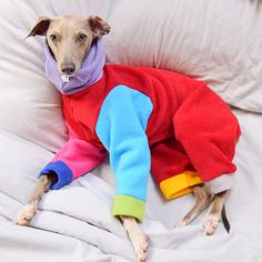 Funky create your own rainbow onesie