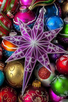 Purple Christmas Star Photograph