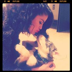 rescue dog going home with Selena Gomez