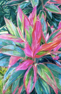Scarlet Ti - watercolor by ©Susan Duda (via FineArtAmerica)